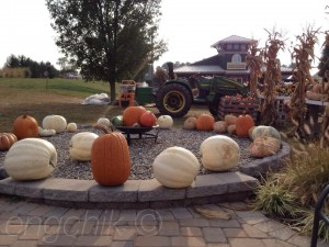 Pumpkins outside a rural home