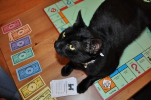 Cat Winning at Monopoly by business plans 2013